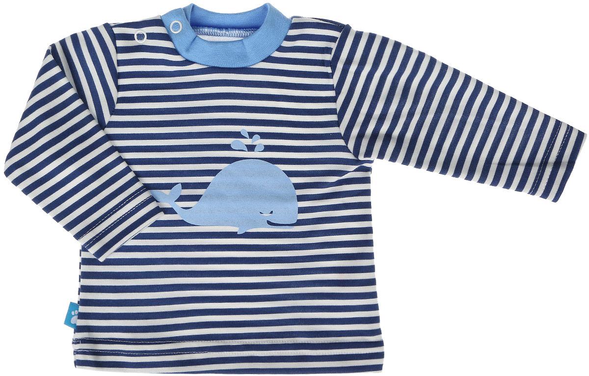 Лонгслив для мальчика КотМарКот, цвет: синий, белый. 7911. Размер 807911Лонгслив для мальчика КотМарКот выполнен из качественного материала. Модель с круглым вырезом горловины и длинными рукавами.