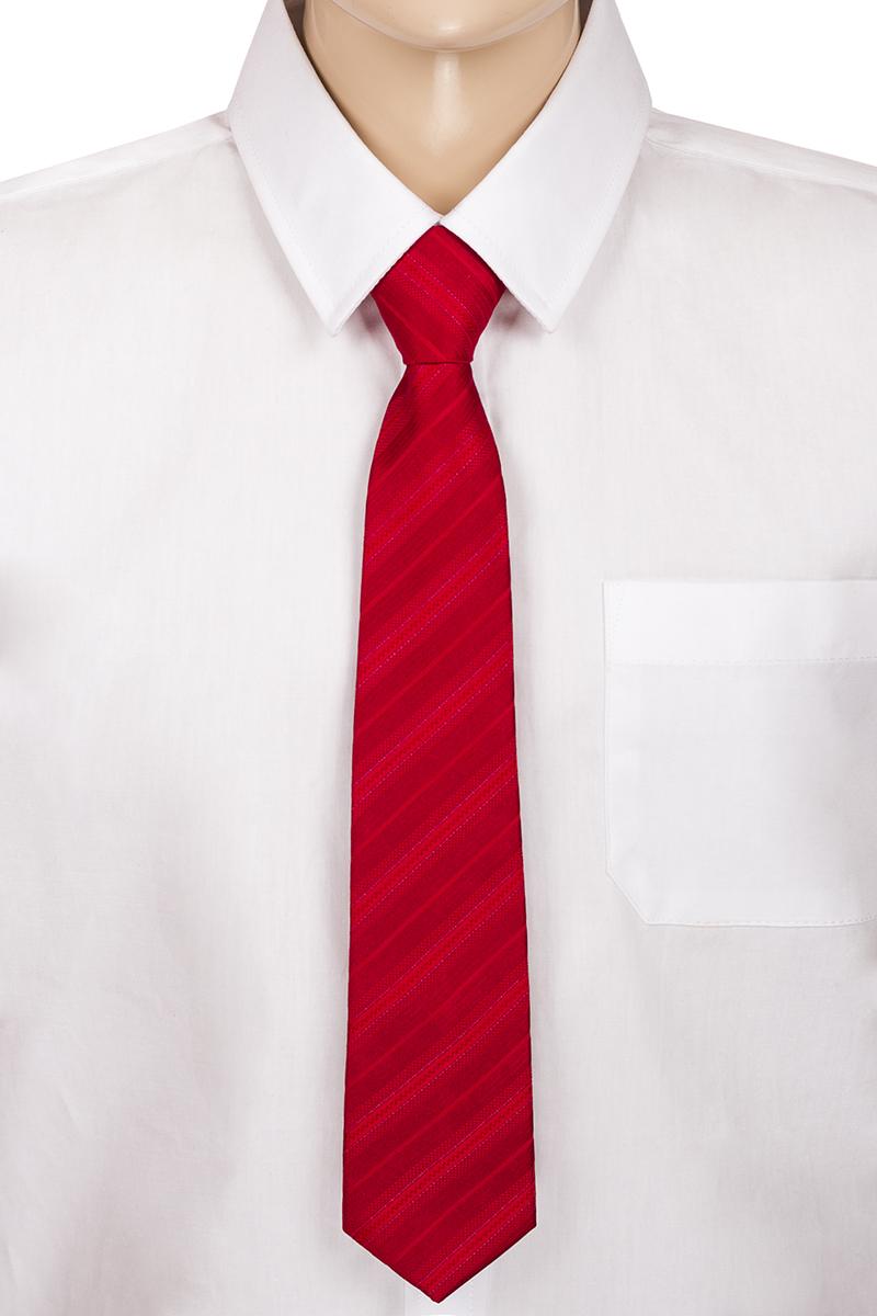 Галстук для мальчика Brostem, цвет: красный, темно-красный. CCAL0701-7. Размер универсальныйCCAL0701-7Модный галстук для мальчика Brostem изготовлен из полиэстера. Обхват шеи регулируется с помощью пластикового фиксатора. Галстук оформлен оригинальным принтом.