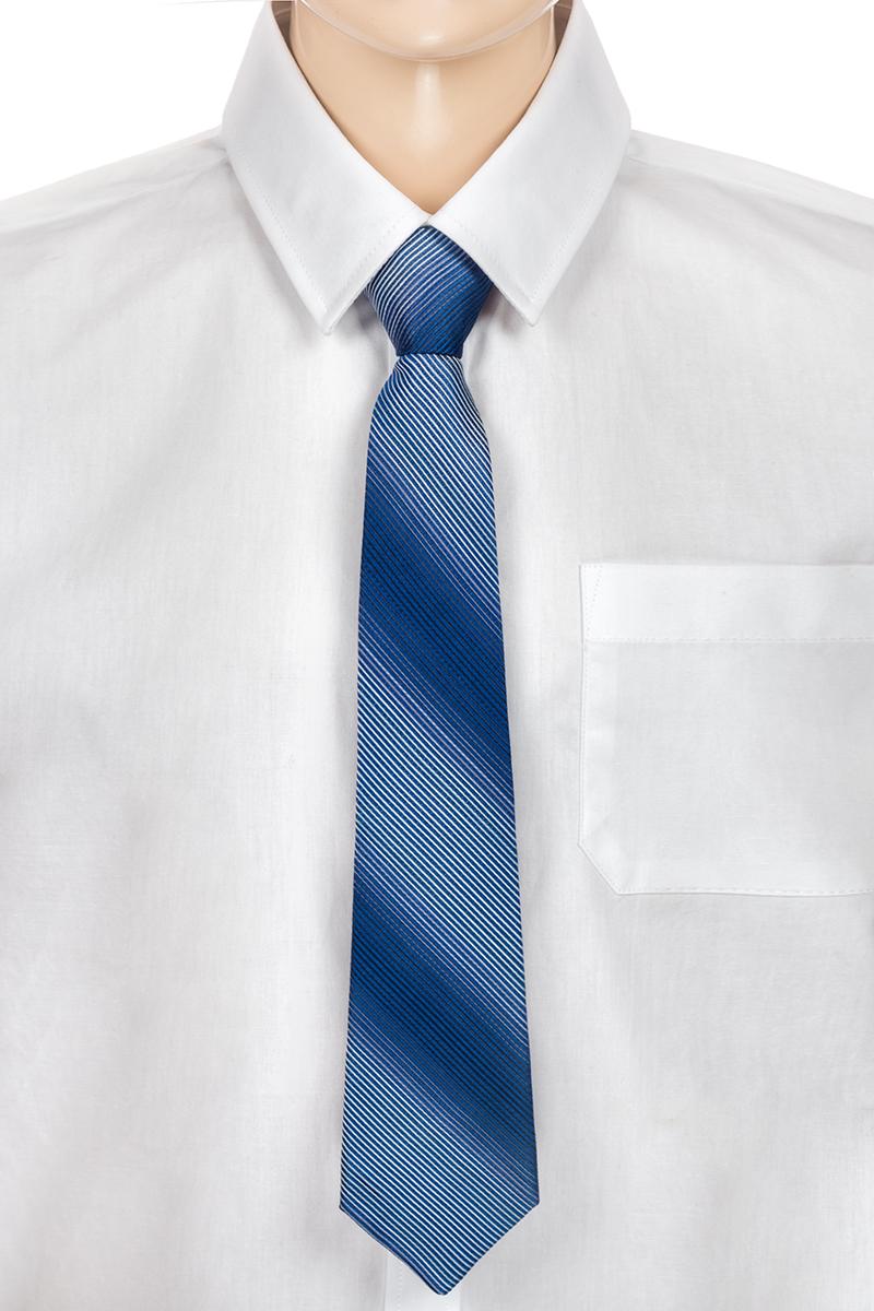 Галстук для мальчика Brostem, цвет: синий, голубой. CCAL0901-9. Размер универсальныйCCAL0901-9Модный галстук для мальчика Brostem изготовлен из полиэстера. Обхват шеи регулируется с помощью пластикового фиксатора. Галстук оформлен оригинальным принтом.