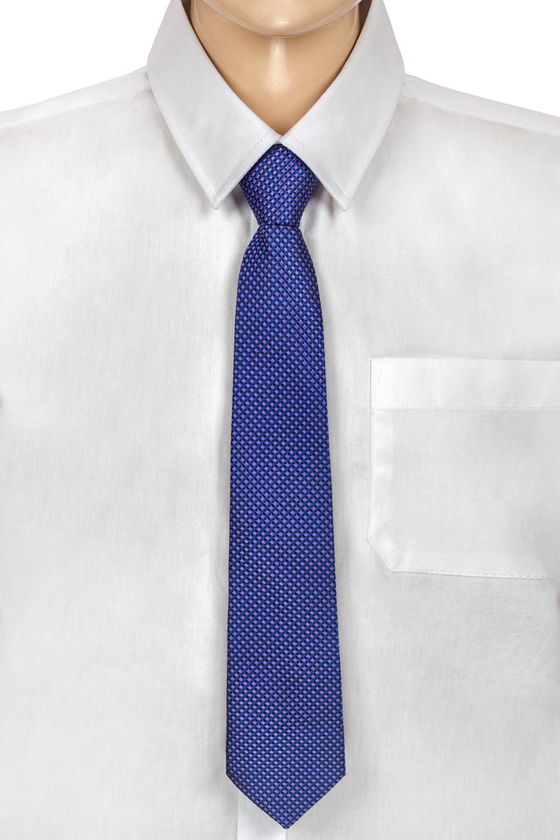 Галстук для мальчика Brostem, цвет: сиреневый, синий. RKCAL53-53. Размер универсальныйRKCAL53-53Модный галстук для мальчика Brostem изготовлен из полиэстера. Обхват шеи регулируется с помощью пластикового фиксатора. Галстук оформлен оригинальным принтом.