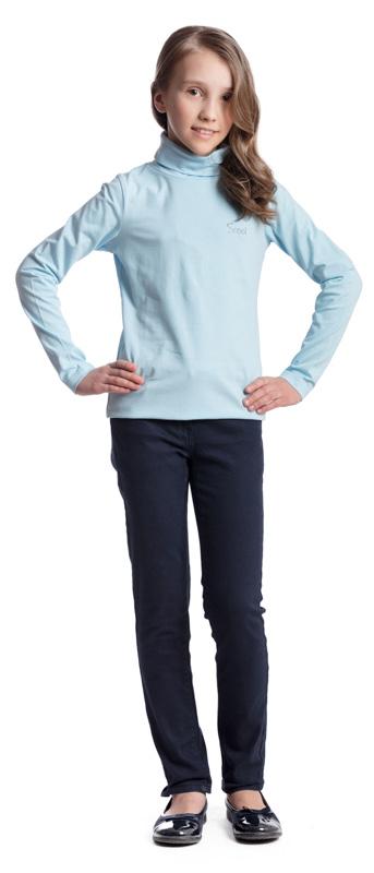 Водолазка для девочки Scool, цвет: голубой. 374494. Размер 140, 10 лет374494Водолазка для девочки Scool изготовлена из эластичного хлопка. Модель с воротником-гольф и длинными рукавами сможет быть одной из базовых вещей детского повседневного гардероба. В качестве декора использована небольшая аппликация из стразов.