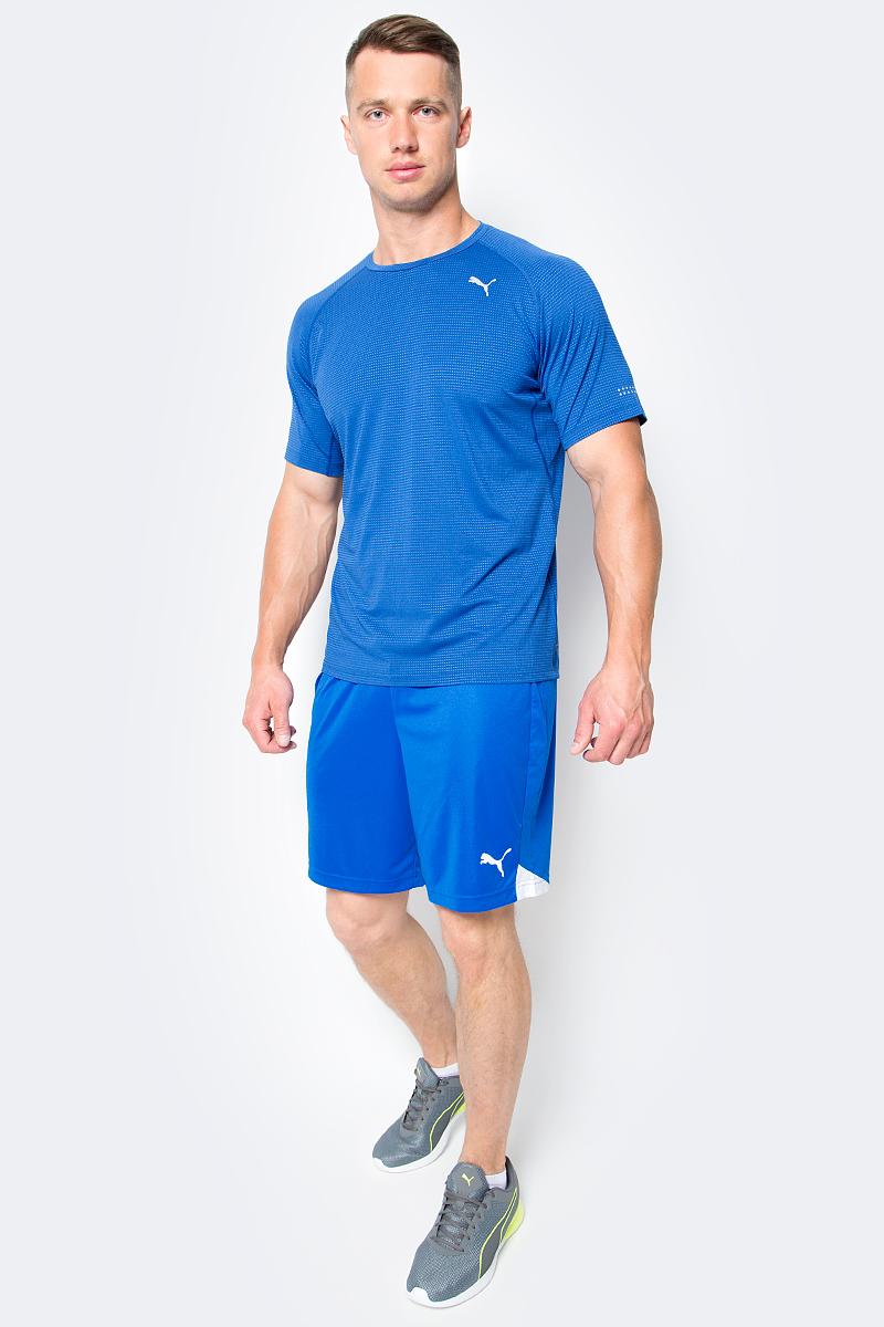 Шорты мужские Puma FtblTRG Shorts, цвет: голубой. 655208_02. Размер L (50/52)655208_02Шорты мужские Ftbltrg Shorts выполнены из 100% полиэстера с использованием высокофункциональной технологии dryCELL, которая отводит влагу, поддерживает тело сухим и гарантирует комфорт. Шорты декорированы логотипом PUMA, нанесенным методом термопечати на левую штанину. Имеются вставки из сетчатого материала. Пояс из эластичного материала снабжен затягивающимся шнуром. Изделие имеет стандартную посадку и классический покрой. Удобные спортивные шорты отлично подойдут для командных игр или для тренировки в зале.