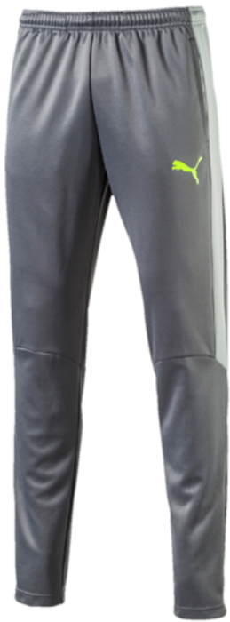 Брюки спортивные мужские Puma evoTRG Pant, цвет: серый. 65534003. Размер L (48/50)65534003Модель декорирована логотипом Puma, нанесенным на левую штанину методом термопечати. Она изготовлена с использованием высокофункциональной технологии DryCell, которая отводит влагу, поддерживает тело сухим и гарантирует комфорт во время активных тренировок и занятий спортом. Фирменные лампасы Puma выполнены из сетчатого материала. Пояс из эластичного материала снабжен затягивающимся шнуром. Такая конструкция пояса удачно дополняет эргономичный фасон в обтяжку по фигуре с зауженными штанинами. Два боковых карманы удобны и достаточно вместительны.