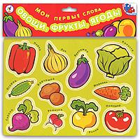 Купить Дрофа-Медиа Магнитная игра Мои первые слова Овощи фрукты ягоды, Обучение и развитие