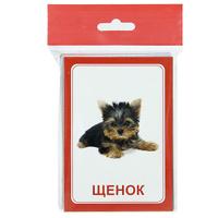 Купить Вундеркинд с пеленок Обучающие карточки Логопедка Щ+Х