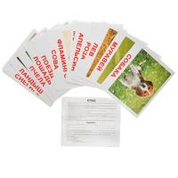 Купить Вундеркинд с пеленок Обучающие карточки Мои первые знания, Обучение и развитие