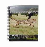 Купить Тетрадь на спирали, 96л Open nature, леопард, Полиграфика