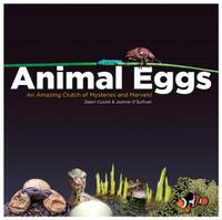 Купить Animal Eggs, Животные и растения
