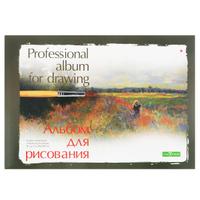 Купить Альбом для рисования Альт , профессиональный, 20 листов, в ассортименте, Бумага и картон
