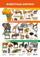 Купить Дрофа-Медиа Обучающий плакат Животные Африки