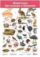 Купить Дрофа-Медиа Обучающий плакат Животные Австралии и Океании