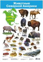 Купить Дрофа-Медиа Обучающий плакат Животные Северной Америки