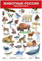 Купить Дрофа-Медиа Обучающий плакат Животные России-2 Красная книга