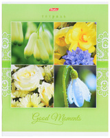 Купить Hatber Тетрадь Good Moments 80 листов в клетку цвет светло-зеленый