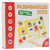 Купить Развивающие деревянные игрушки Лото Овощи фрукты ягоды, Обучение и развитие