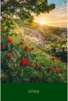 Купить Канц-Эксмо Тетрадь Пейзаж Утро в горах 80 листов в клетку, Тетради