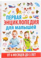 Купить Первая энциклопедия для малышей от 6 месяцев до 3 лет, Познавательная литература обо всем