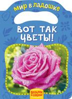 Купить Вот так цветы!, Книги с вырубкой