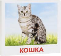 Купить Вундеркинд с пеленок Обучающие карточки Домашние животные ВСПБК