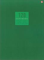 Купить Эксмо Тетрадь Стиль и цвет 120 листов в клетку цвет зеленый, Тетради
