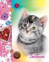 Купить Апплика Дневник школьный для младших классов Серый котенок С1559-53, Дневники