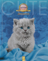 Купить Апплика Дневник школьный для младших классов Серый котенок С0177-152, Дневники