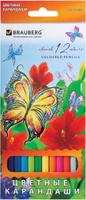 Купить Brauberg Набор цветных карандашей Wonderful Butterfly 12 цветов, Карандаши