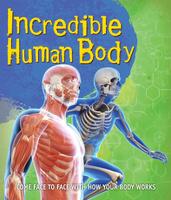 Купить Fast Facts! Incredible Human Body, Все о человеке