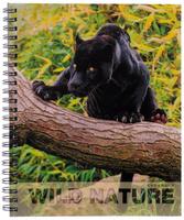 Купить Канц-Эксмо Тетрадь Грациозные хищники Пантера 96 листов в клетку, Тетради