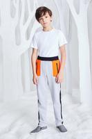 Купить Брюки спортивные для мальчика Смена, цвет: серый. 17с262. Размер 110/116, Одежда для мальчиков
