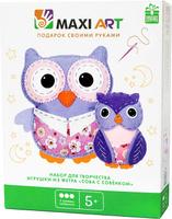 Купить Maxi Art Набор для творчества Игрушка из фетра Сова с совёнком, HK KYO ARTS & CRAFTS CO., LTD, Игрушки своими руками