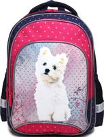 Купить 4ALL Рюкзак School цвет синий розовый RU75-01P, Ранцы и рюкзаки