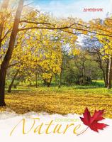 Купить Апплика Дневник школьный для младших классов Золотая осень С3621-08, Дневники