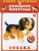 Купить Домашние животные (набор карточек), Животные и растения