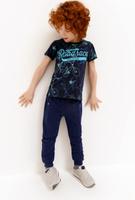 Купить Брюки для мальчика Acoola Pele, цвет: темно-синий. 20120160148_600. Размер 104, Одежда для мальчиков