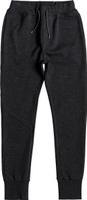 Купить Брюки спортивные для мальчика Quiksilver, цвет: темно-серый. EQBFB03061-KTA0. Размер 146/152, Одежда для мальчиков
