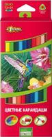 Купить №1 School Набор двухсторонних цветных карандашей ColorPics с точилкой 12 шт, Карандаши