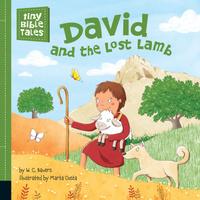 Купить David and the Lost Lamb, Зарубежная литература для детей