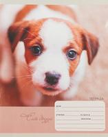 Купить Unnika Land Тетрадь Милые собачки 18 листов в клетку, Тетради