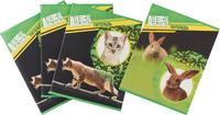 Купить Action! Набор тетрадей Animal Planet Собаки 96 листов в клетку 4 шт, Тетради