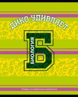 Купить BG Тетрадь Motivator 40 листов в клетку цвет светло-зеленый розовый 20464, Тетради