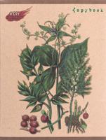 Купить Unnika Land Тетрадь DIY Collection Изысканный гербарий 48 листов в клетку ТКФЛ485908_вид 3, Тетради