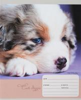 Купить Unnika Land Тетрадь Милые собачки 18 листов в клетку вид 2, Тетради