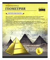 Купить Profit Тетрадь Золотая серия Геометрия 48 листов в клетку, Тетради