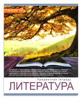 Купить Проф-Пресс Тетрадь Мир вокруг Литература 48 листов в линейку, Тетради