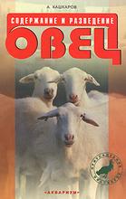 Содержание и разведение овец, А. Кашкаров