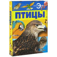 Птицы, А. А. Спектор
