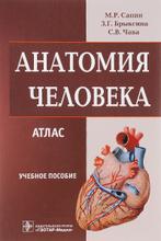 Анатомия человека. Атлас для медицинских училищ и колледжей, М. Р. Сапин, З. Г. Брыскина, С. В. Чава
