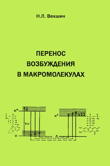 Перенос возбуждения в макромолекулах, Н. Л. Векшин