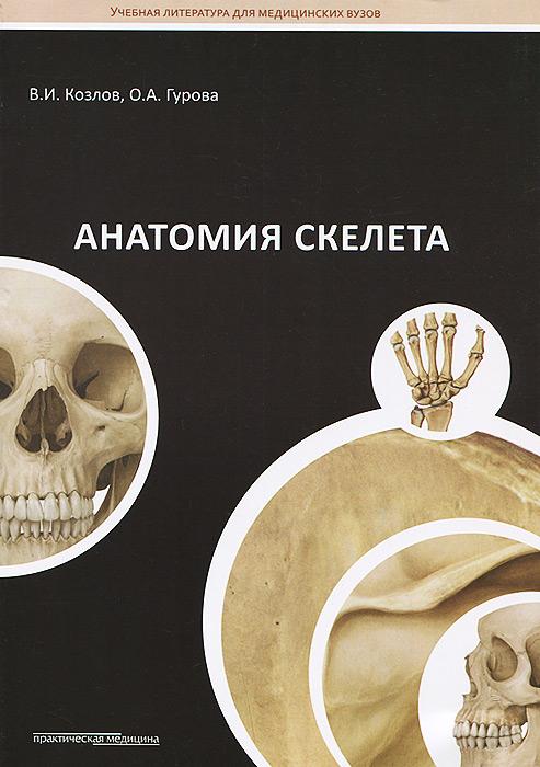 Анатомия скелета. Учебное пособие, В. И. Козлов, О. А. Гурова